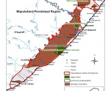 Expédition scientifique « Les rescapés du Gondwana » Afrique du Sud - Pondoland 2012
